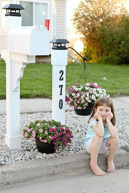 Mailbox Curb Appeal Project by Cami Graham of Tidbits