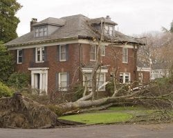 Safety When Returning Home After the Storm | Direct Energy Blog