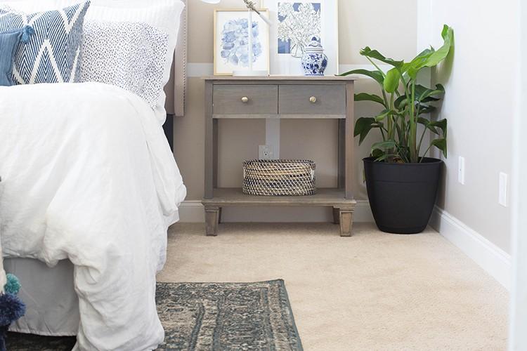 PetProof Carpet, Chelsea Coulston