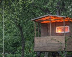 How to Build an Energy-Efficient Treehouse | Direct Energy Blog