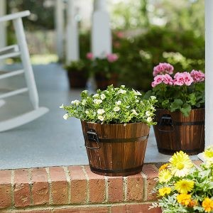 Refresh your patio or porch with new planters and colorful foliage. Choose from a variety of soils for all types of plants and containers.