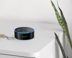 6 Cool Amazon Echo Commands for Your Home   Direct Energy Blog