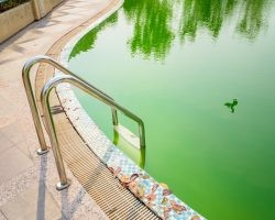 How to Clean Your Green & Cloudy Pool After a Rainstorm | Direct Energy Blog