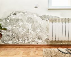 How to Repair Water-Damaged Drywall | Direct Energy Blog