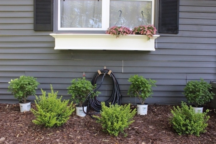 Easy Curb Appeal Transformation